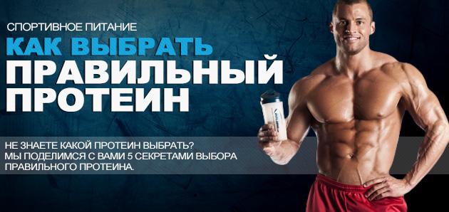 kak-vibrat-protein