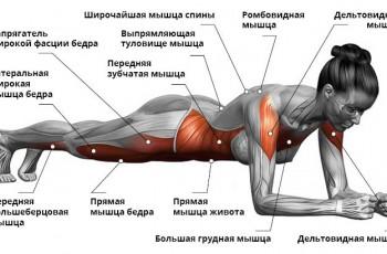 content_planka__econet_ru